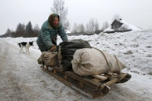 A woman transports bags of wood chips from a sawmill to her house in the village of Selishki-Okorokovo in Yaroslavl Region